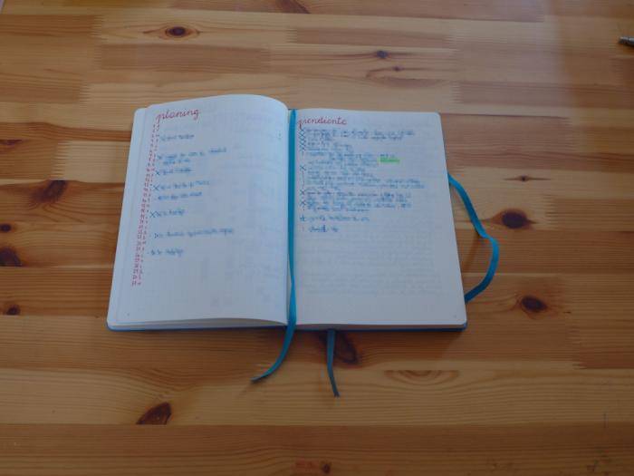 Planning y lista de tareas pendiente
